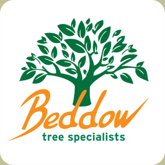 Beddow Tree Care